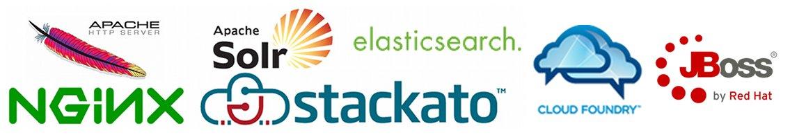 Apache, NGINX, Apache Solr, ElasticSearch, Stackato, Cloud Foundry, JBoss